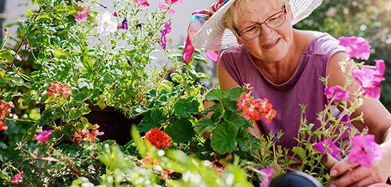 safe senior gardening activities