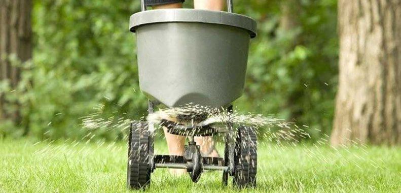How often should you fertilize your lawn